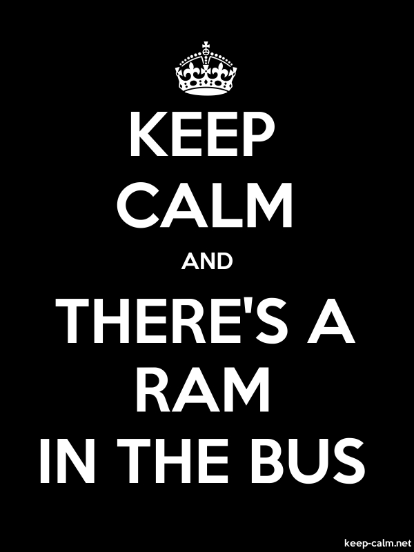 KEEP CALM AND THERE'S A RAM IN THE BUS - white/black - Default (600x800)