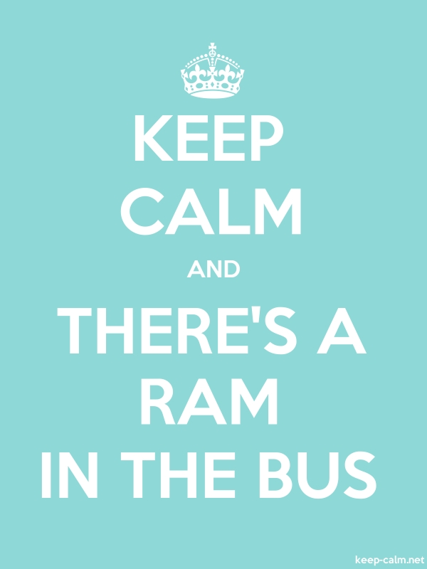 KEEP CALM AND THERE'S A RAM IN THE BUS - white/lightblue - Default (600x800)