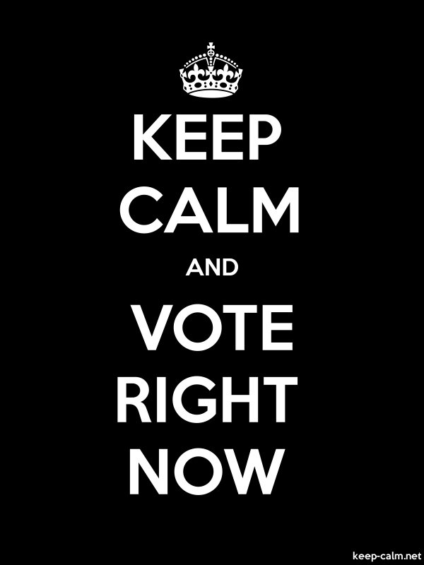 KEEP CALM AND VOTE RIGHT NOW - white/black - Default (600x800)