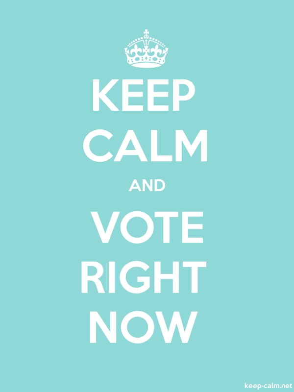 KEEP CALM AND VOTE RIGHT NOW - white/lightblue - Default (600x800)