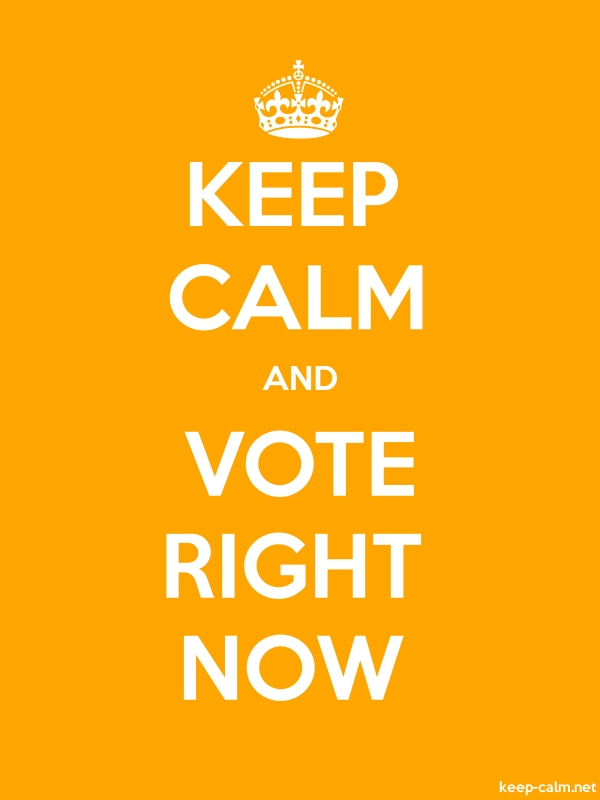 KEEP CALM AND VOTE RIGHT NOW - white/orange - Default (600x800)