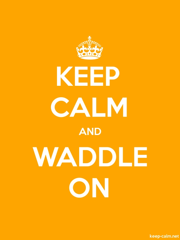 KEEP CALM AND WADDLE ON - white/orange - Default (600x800)
