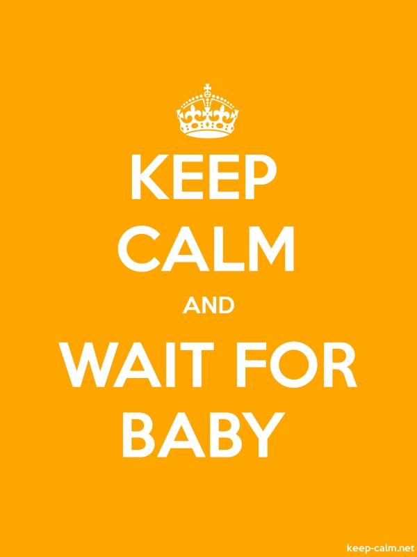 KEEP CALM AND WAIT FOR BABY - white/orange - Default (600x800)