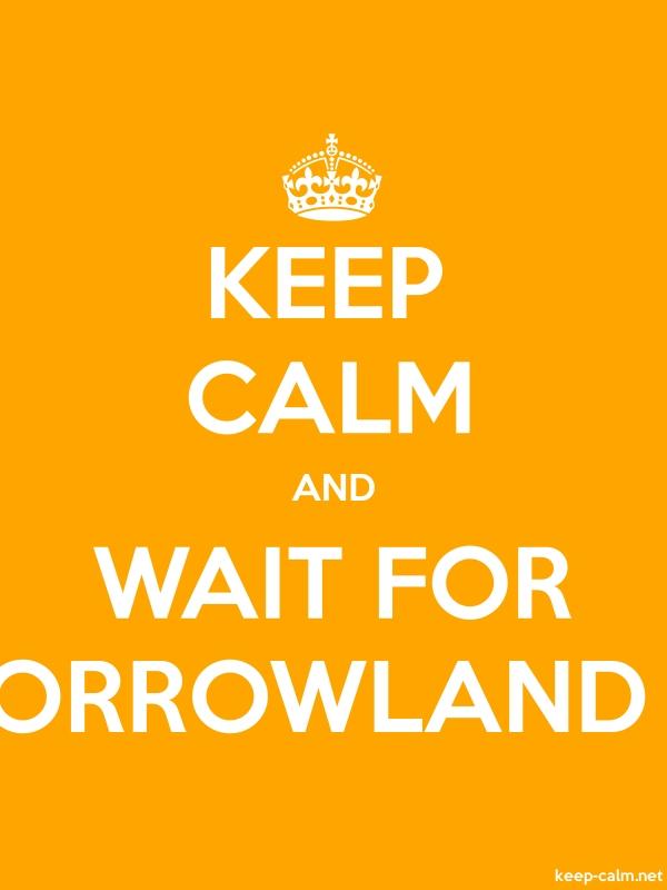 KEEP CALM AND WAIT FOR TOMORROWLAND 2014 - white/orange - Default (600x800)