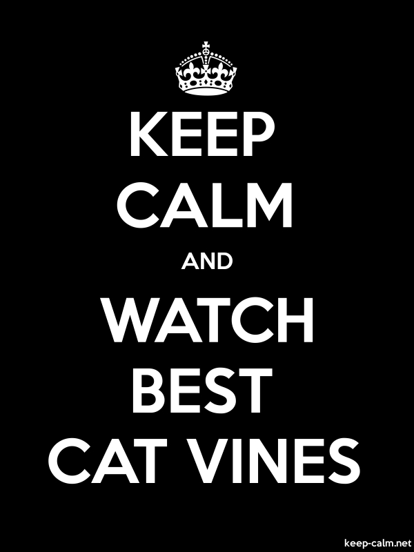 KEEP CALM AND WATCH BEST CAT VINES - white/black - Default (600x800)