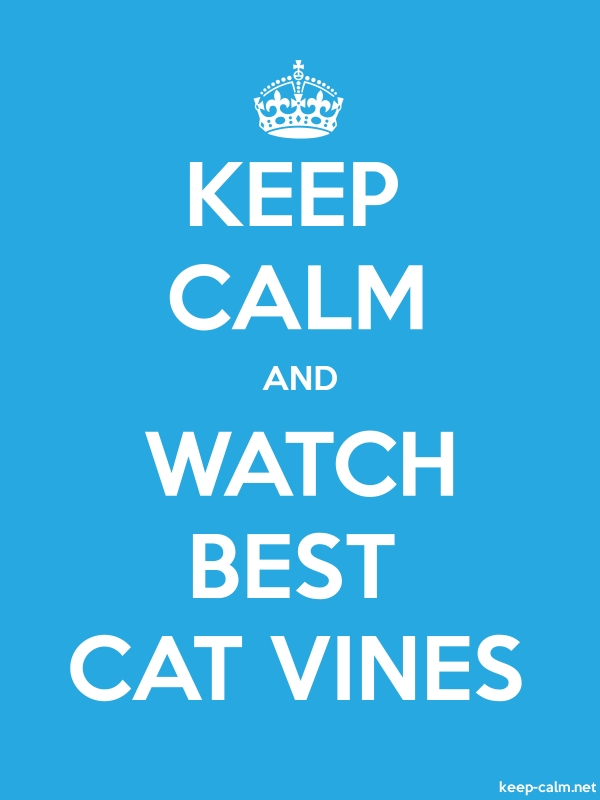 KEEP CALM AND WATCH BEST CAT VINES - white/blue - Default (600x800)