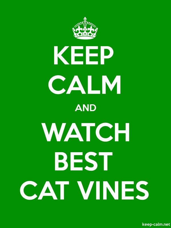 KEEP CALM AND WATCH BEST CAT VINES - white/green - Default (600x800)