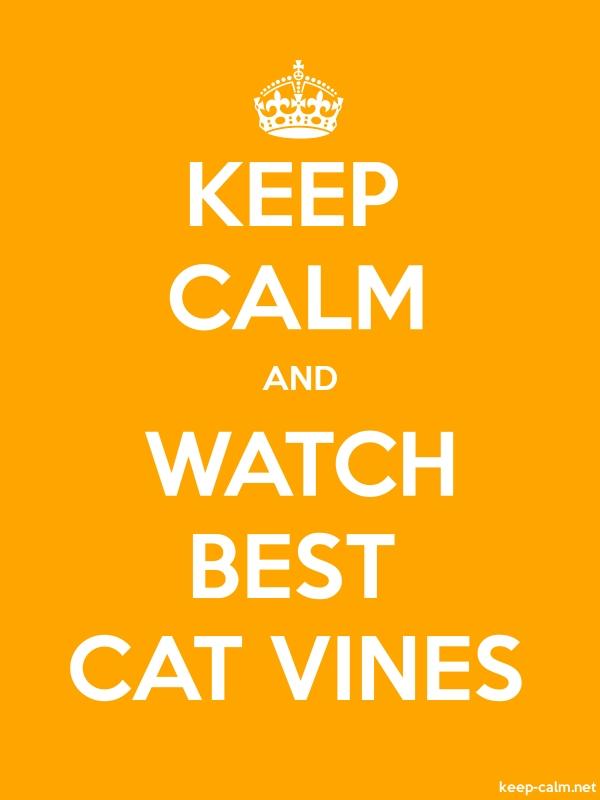 KEEP CALM AND WATCH BEST CAT VINES - white/orange - Default (600x800)