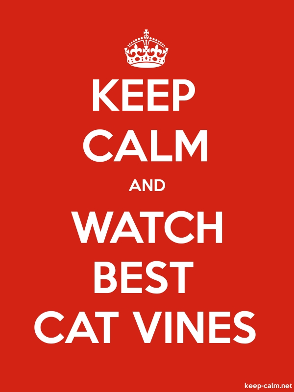 KEEP CALM AND WATCH BEST CAT VINES - white/red - Default (600x800)