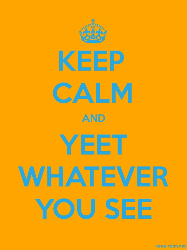 KEEP CALM AND YEET WHATEVER YOU SEE - blue/orange - Default (600x800)