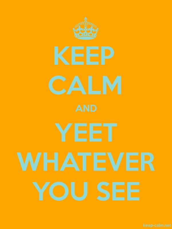 KEEP CALM AND YEET WHATEVER YOU SEE - lightblue/orange - Default (600x800)