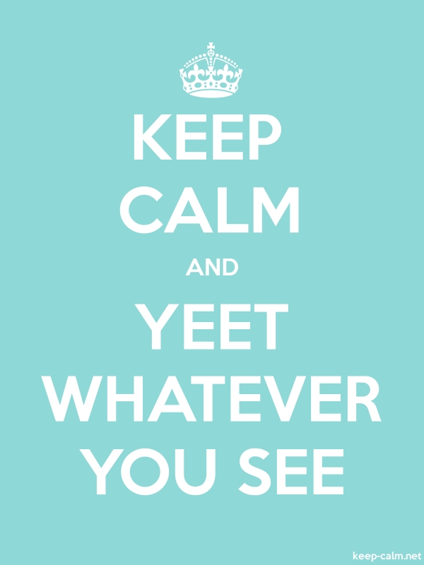 KEEP CALM AND YEET WHATEVER YOU SEE - white/lightblue - Default (600x800)