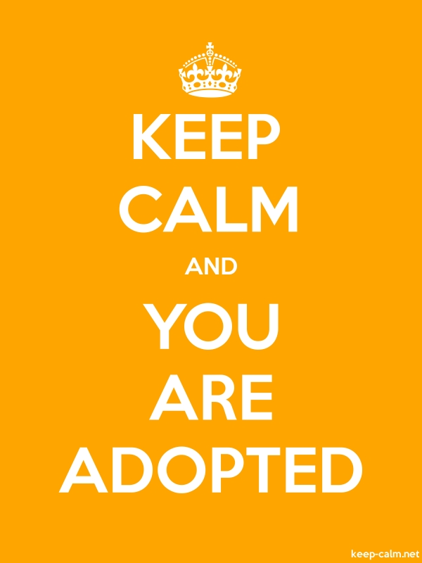 KEEP CALM AND YOU ARE ADOPTED - white/orange - Default (600x800)